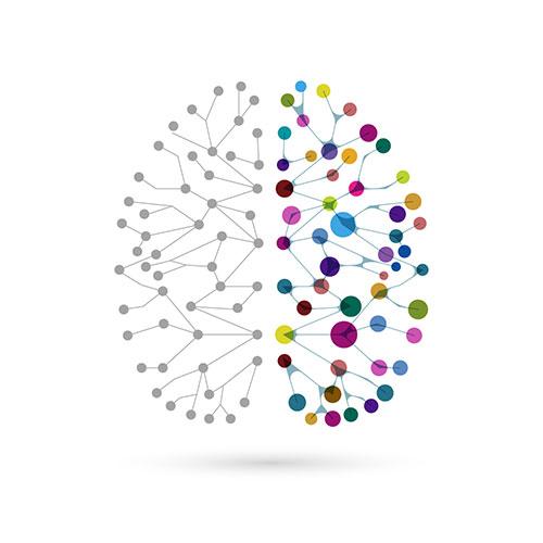 brainboxy