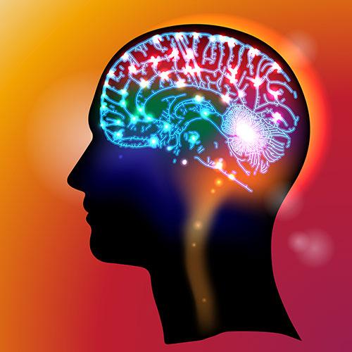 brainspotdos